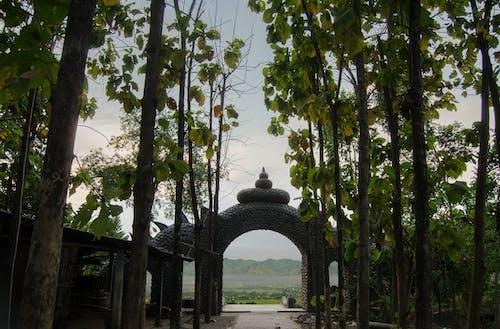 Gratis lagerfoto af port, Tempel