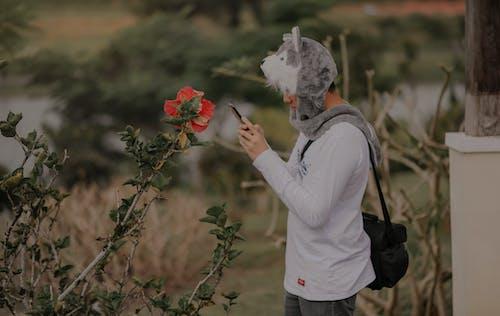 Fotos de stock gratuitas de desgaste, flor, haciendo una foto, hombre