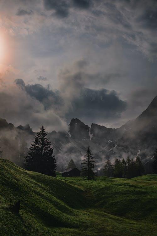 festői, hajnal, hegy