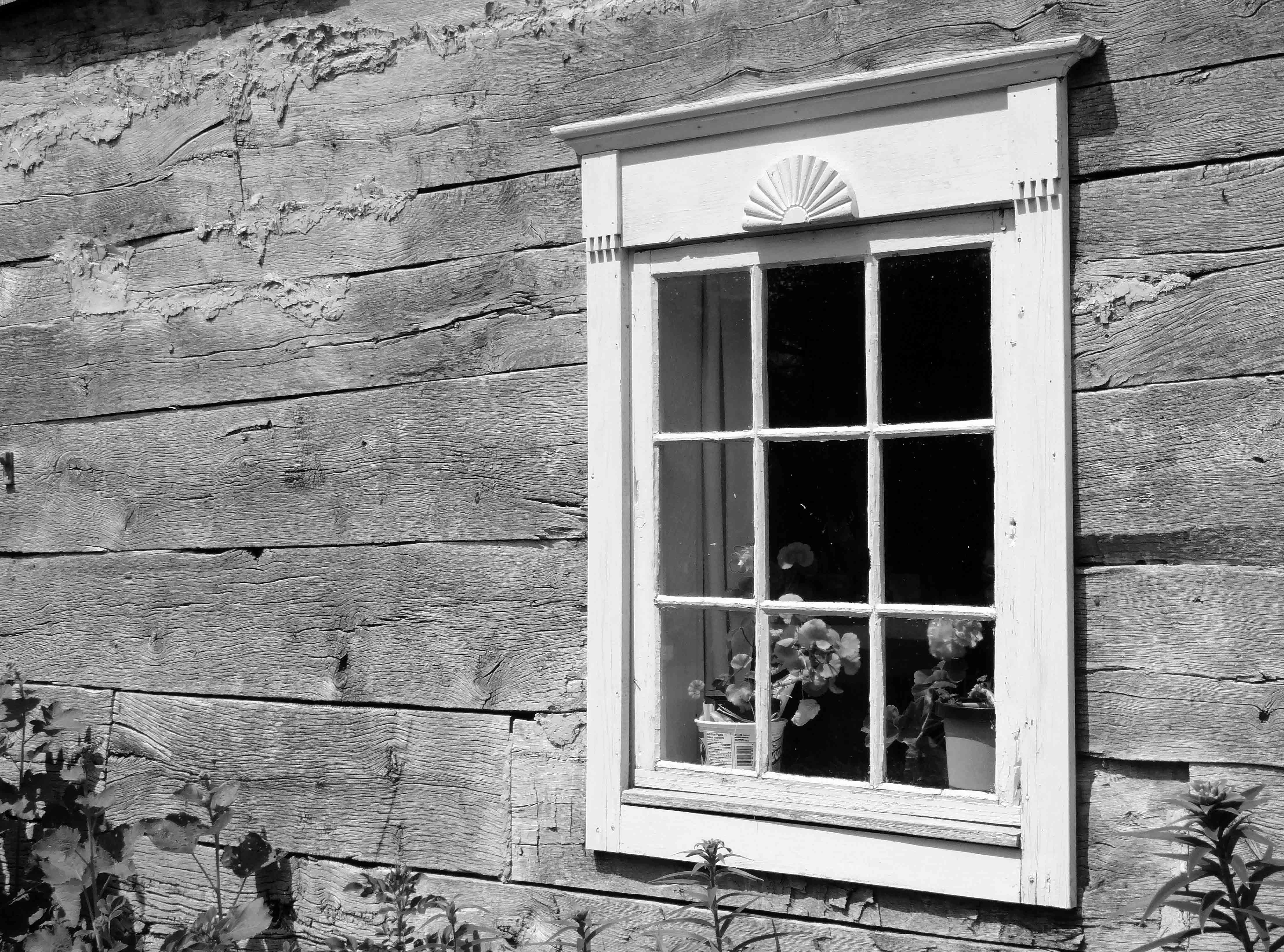 Free stock photo of black and white, old window