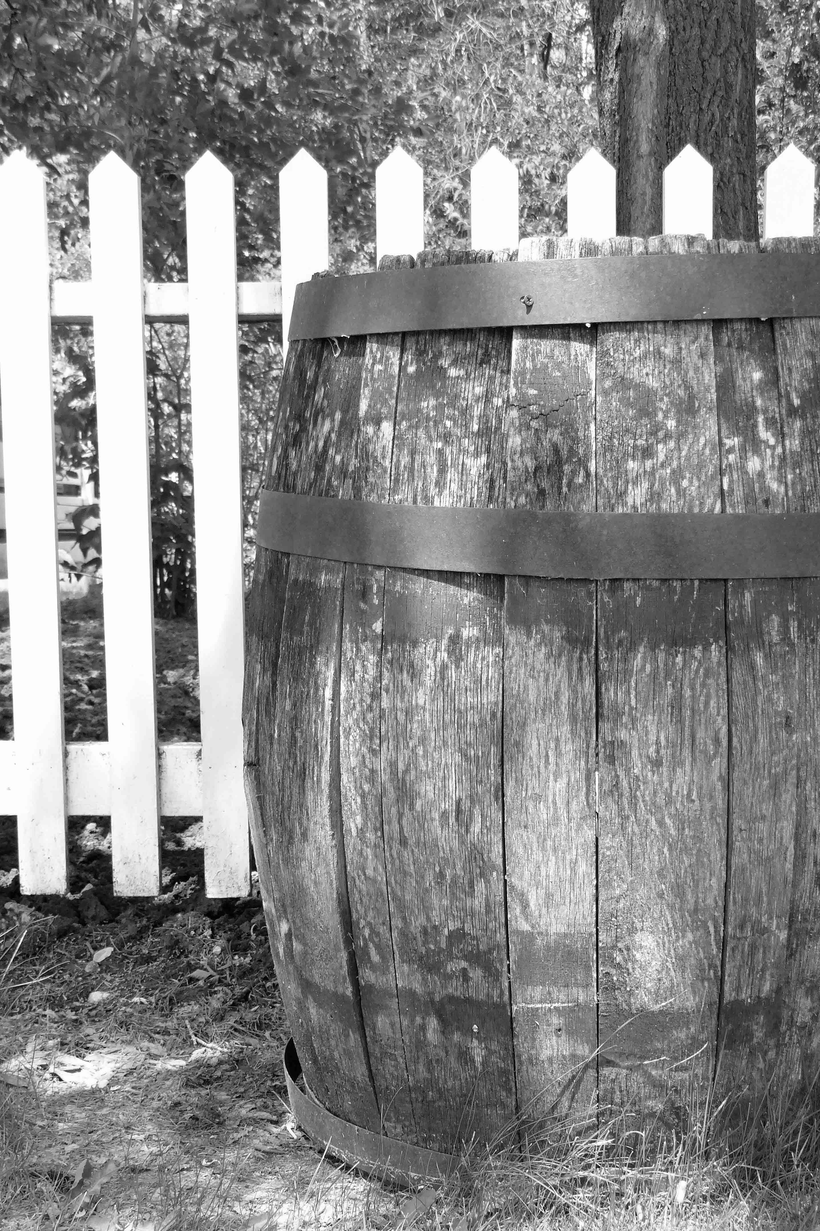 Free stock photo of barrel, black and white
