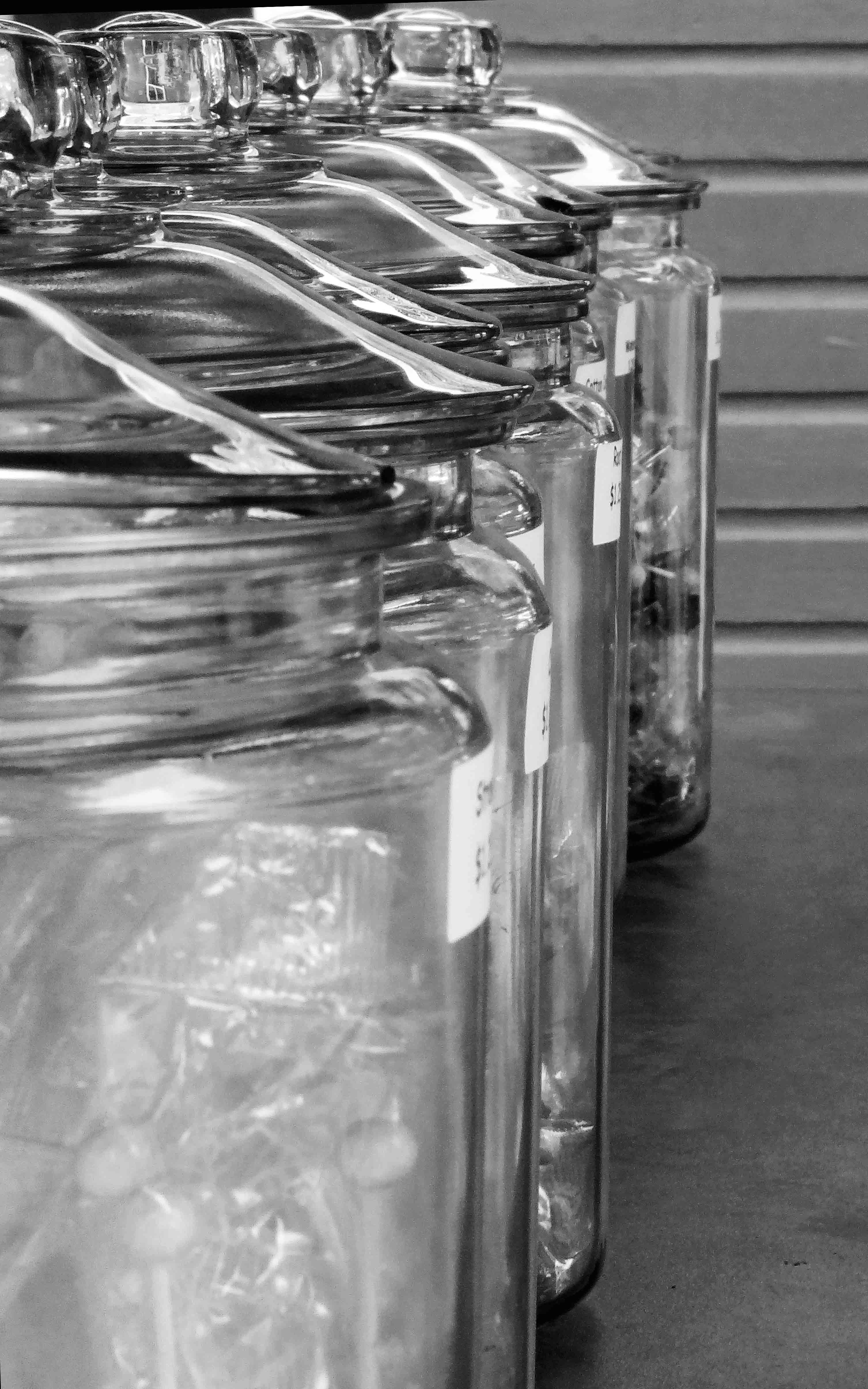 Free stock photo of black and white, glass jars, jars