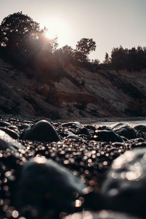 小石, 岩, 岸