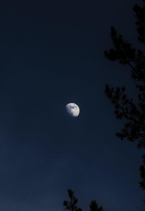 Gratis stockfoto met blauwig, halve Maan