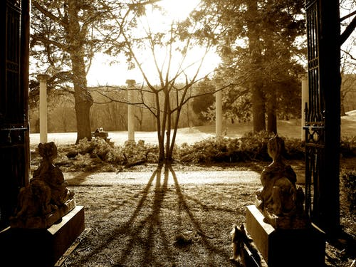 Free stock photo of park, sepia, sunset