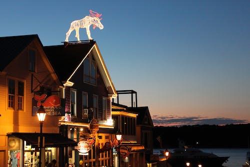 Základová fotografie zdarma na téma los, maine, restaurace, západ slunce