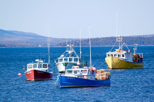 Základová fotografie zdarma na téma čluny, maine