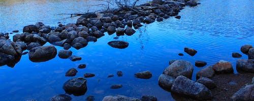 Základová fotografie zdarma na téma modrá, voda