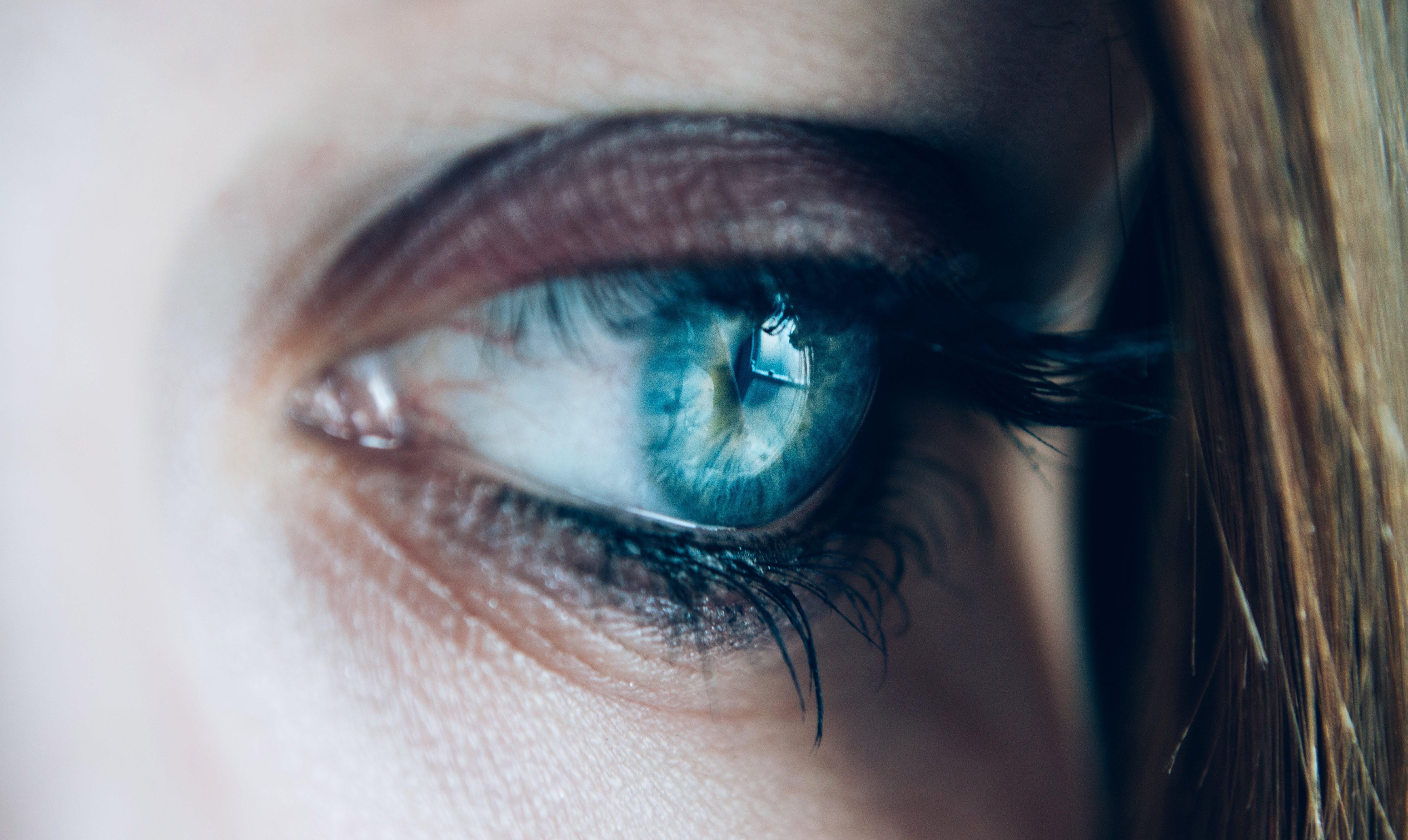 close-up, eye, eyelashes
