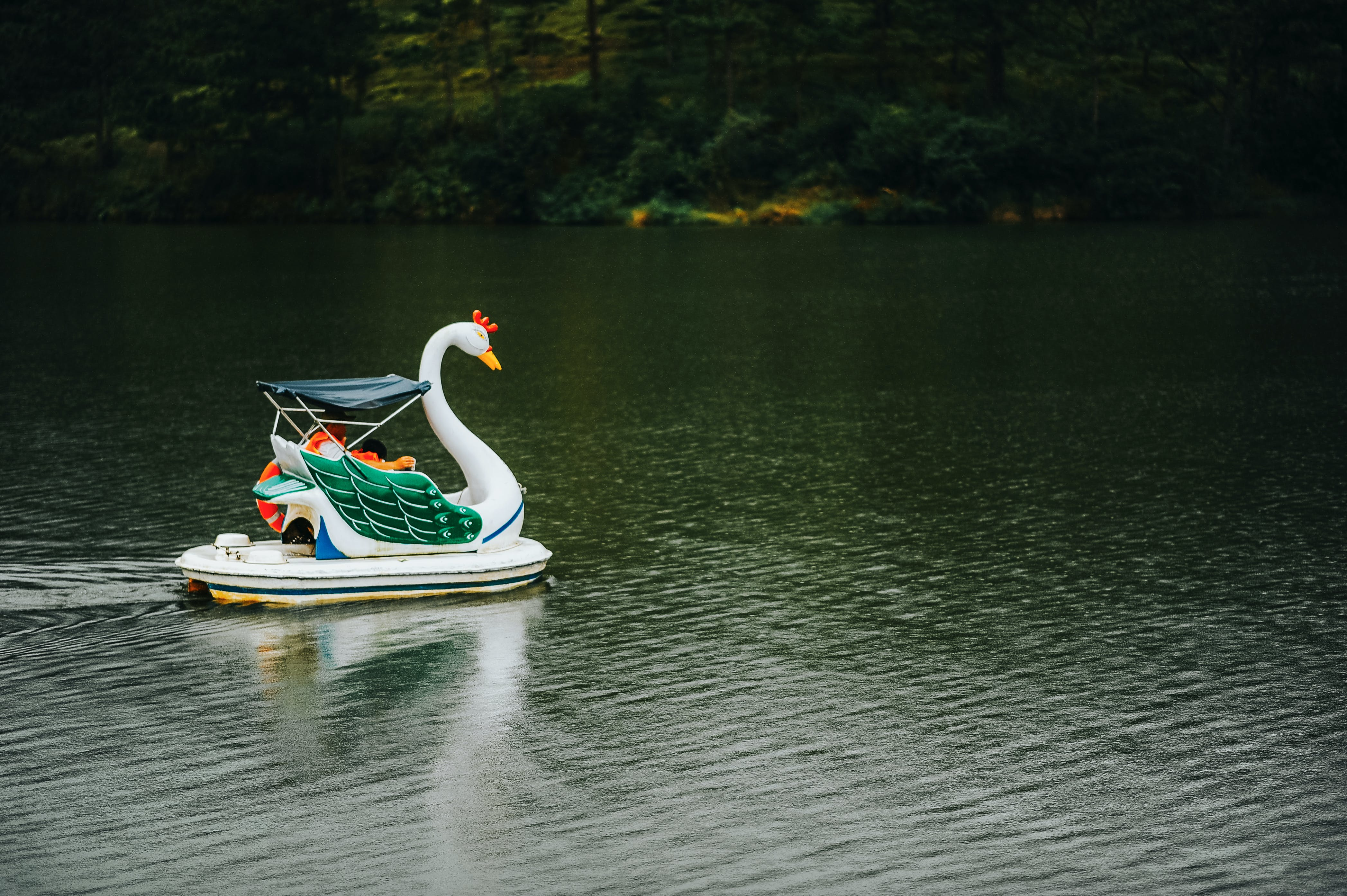 Swan Boat in Body of Water
