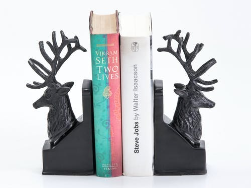 Free stock photo of Bookend online, creative, deer bookend