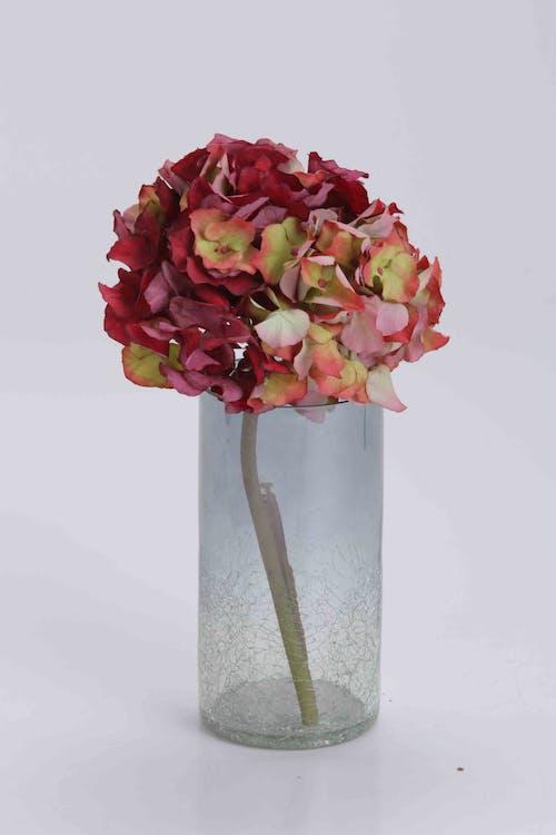 Безкоштовне стокове фото на тему «ваза, ваза з троянди, квіткова ваза, ліхтар»