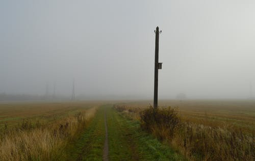Free stock photo of field, fog, foggy, misty
