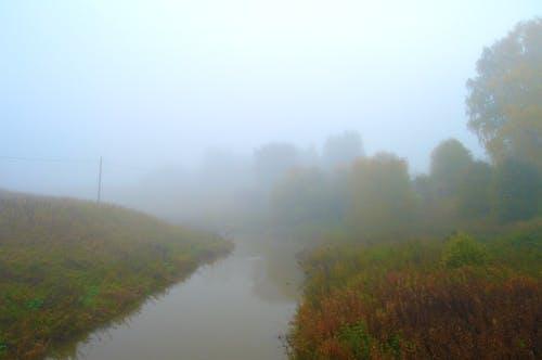 Kostenloses Stock Foto zu nebel, neblig