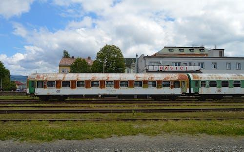 Free stock photo of train, train car, train station