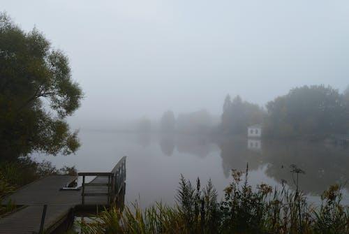 Free stock photo of Aurajoki, fog, foggy