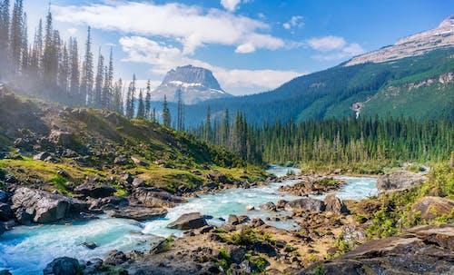 Fotobanka sbezplatnými fotkami na tému epos, fotografia, hory, Kanada