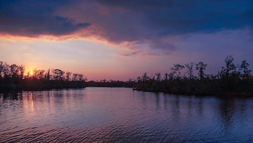 Foto profissional grátis de Nikon, pôr do sol, trilha natural
