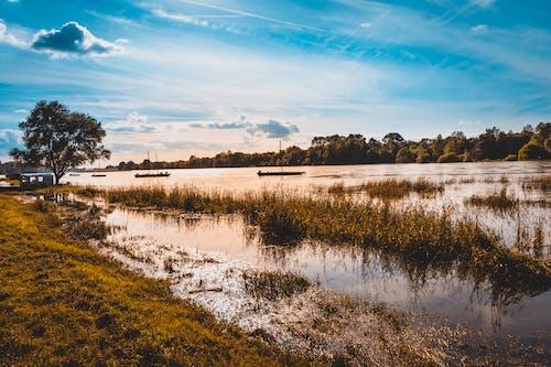 Darmowe zdjęcie z galerii z bagno, błękitne niebo, światło dzienne, woda