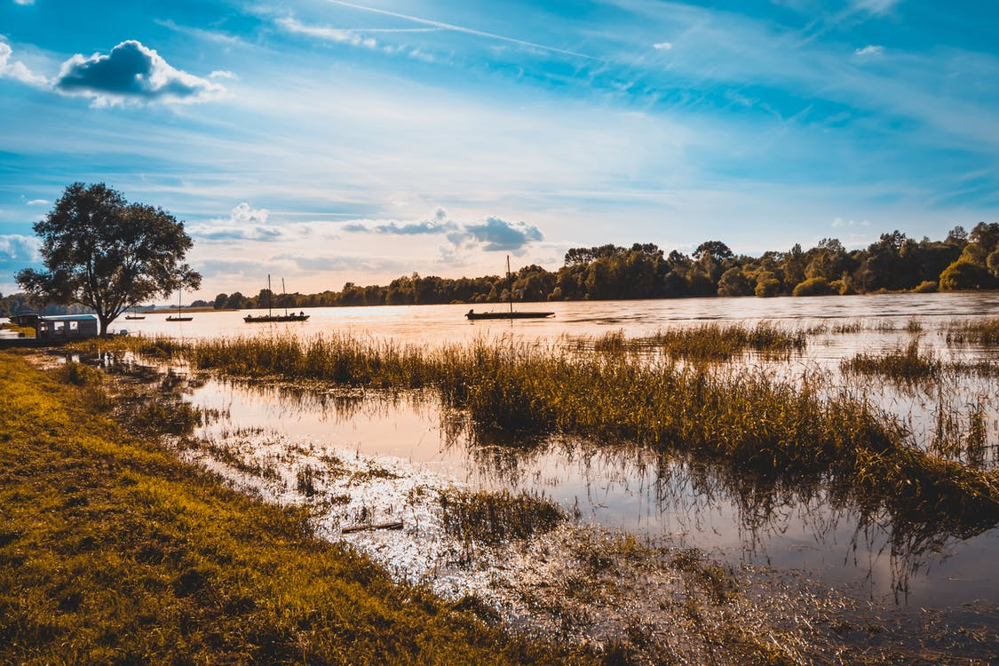 ánh sáng ban ngày, đầm lầy, Nước