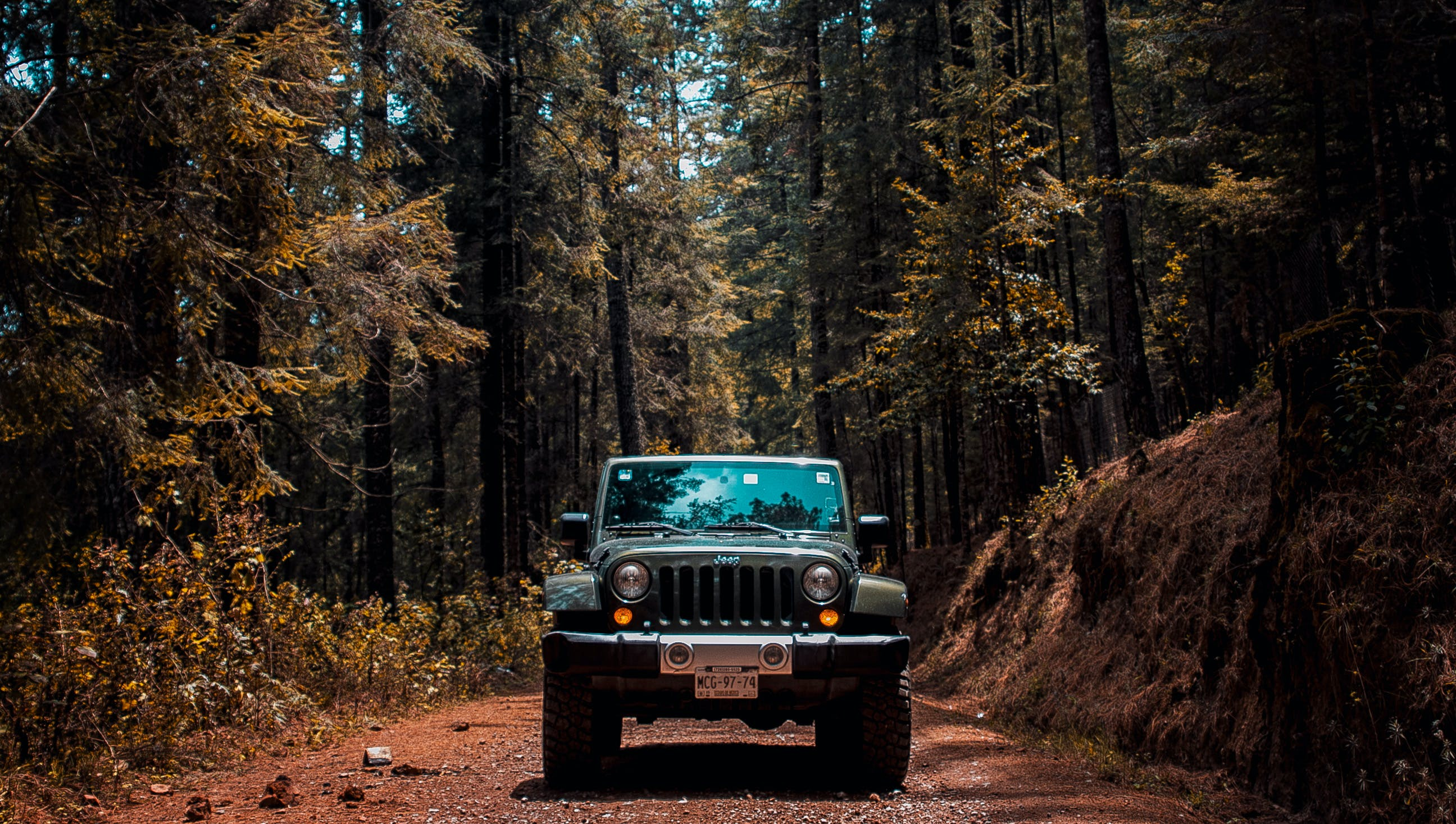 Free stock photo of adventure, car, car wallpapers, forest