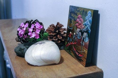 Gratis stockfoto met #dennenappel, #flowersonshelf