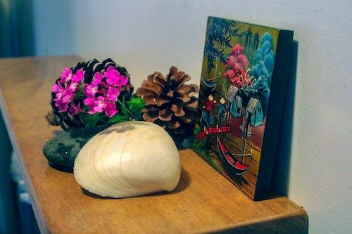 Gratis stockfoto met #flowersonshelf