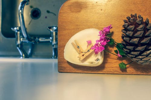 Gratis stockfoto met dennenappel, haringen, keukentap, veldbloemen