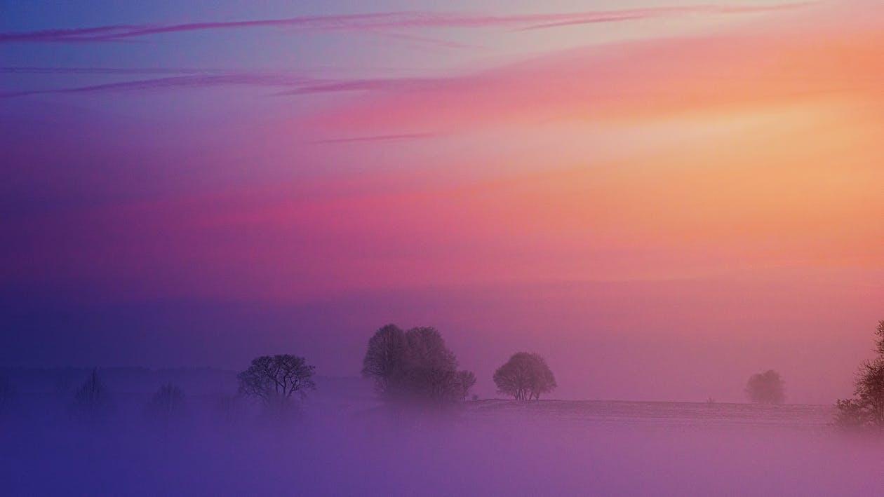 bình minh, có sương mù, danh lam thắng cảnh
