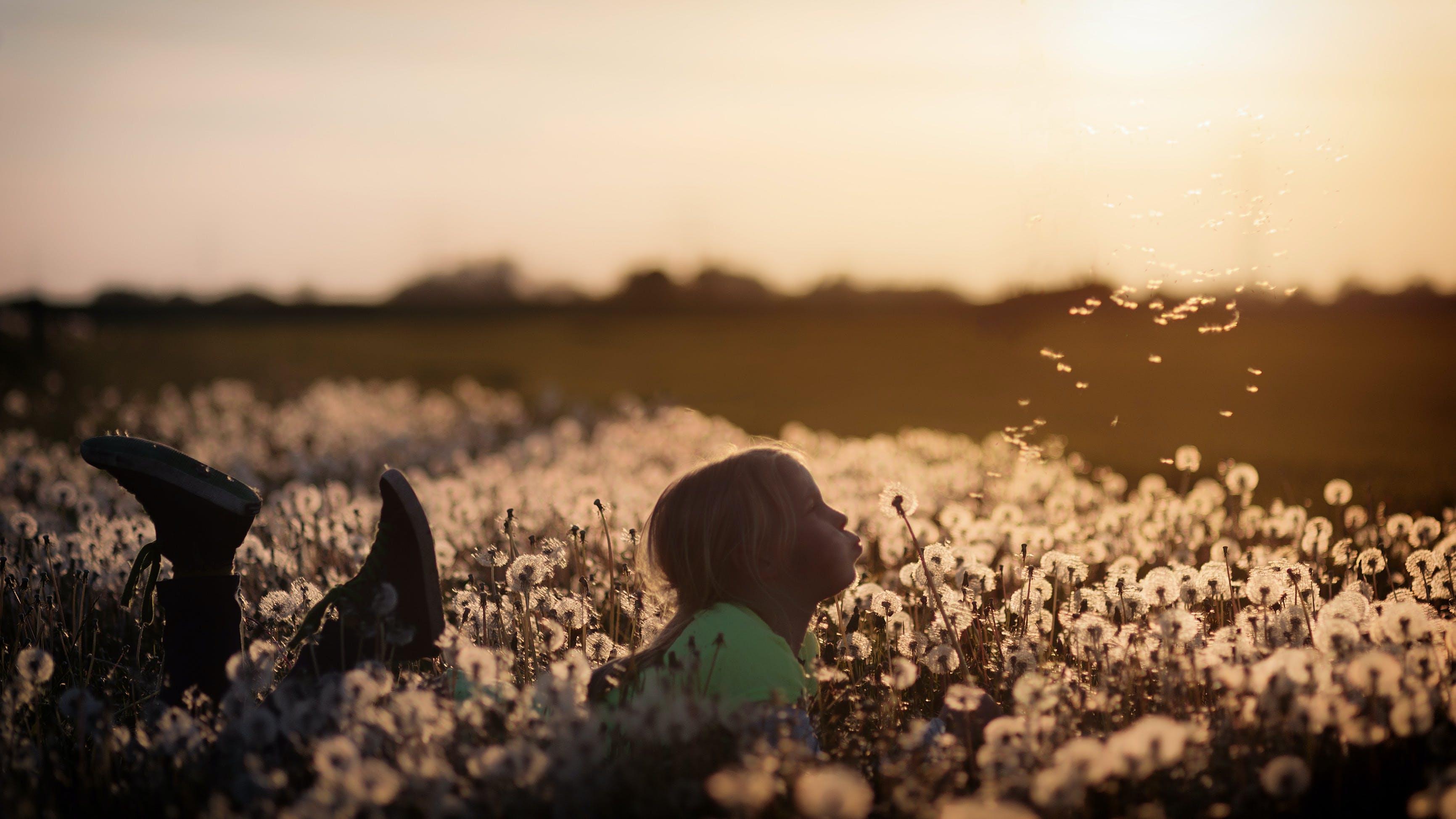 Girl Blowing A Dandelion Flower