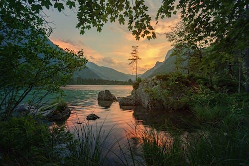 夜明け, 日没, 水, 穏やかなの無料の写真素材