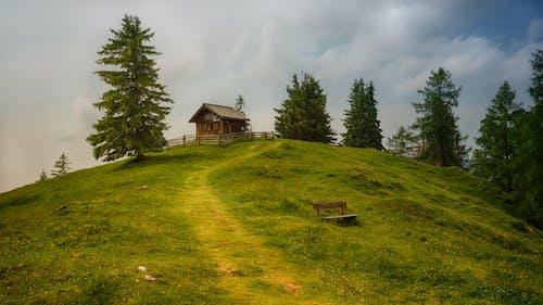 Ilmainen kuvapankkikuva tunnisteilla koti, maaseutu, mäki, mökki