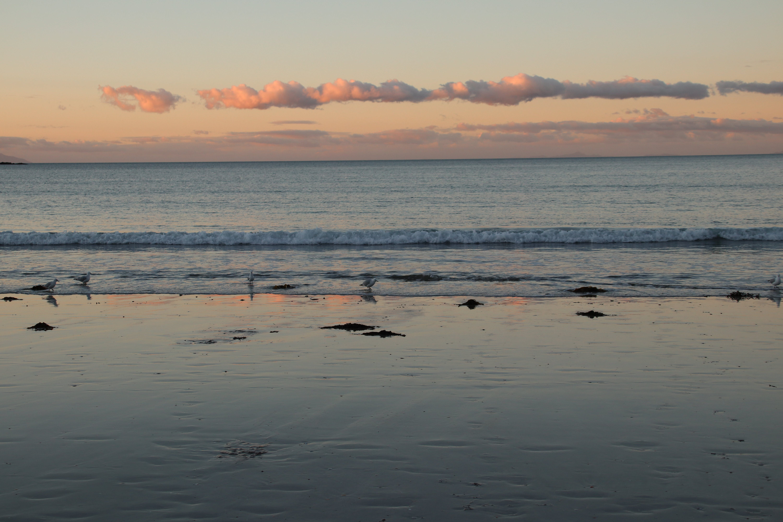 Free stock photo of evening sun, sea