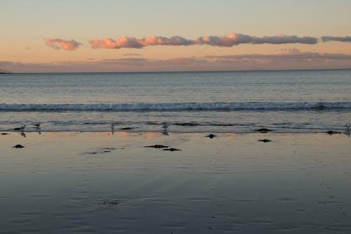 Základová fotografie zdarma na téma moře, večerní slunce