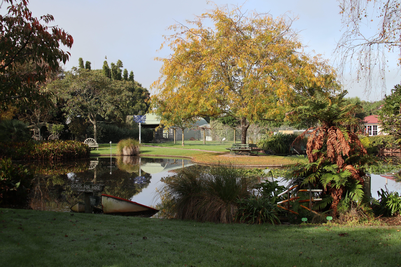 Free stock photo of garden, nature, Ngatea Water Gardens, plants