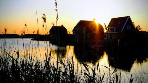 Gratis arkivbilde med daggry, elv, gress, innsjø