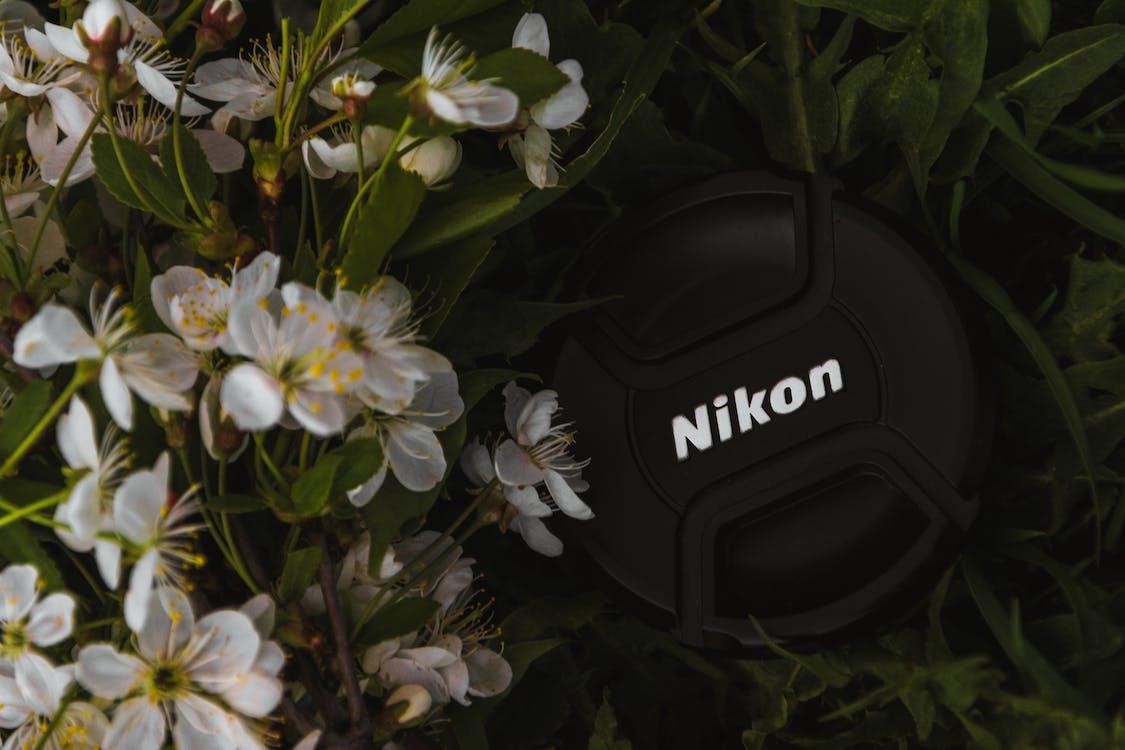 HD-шпалери, Nikon, весняні квіти