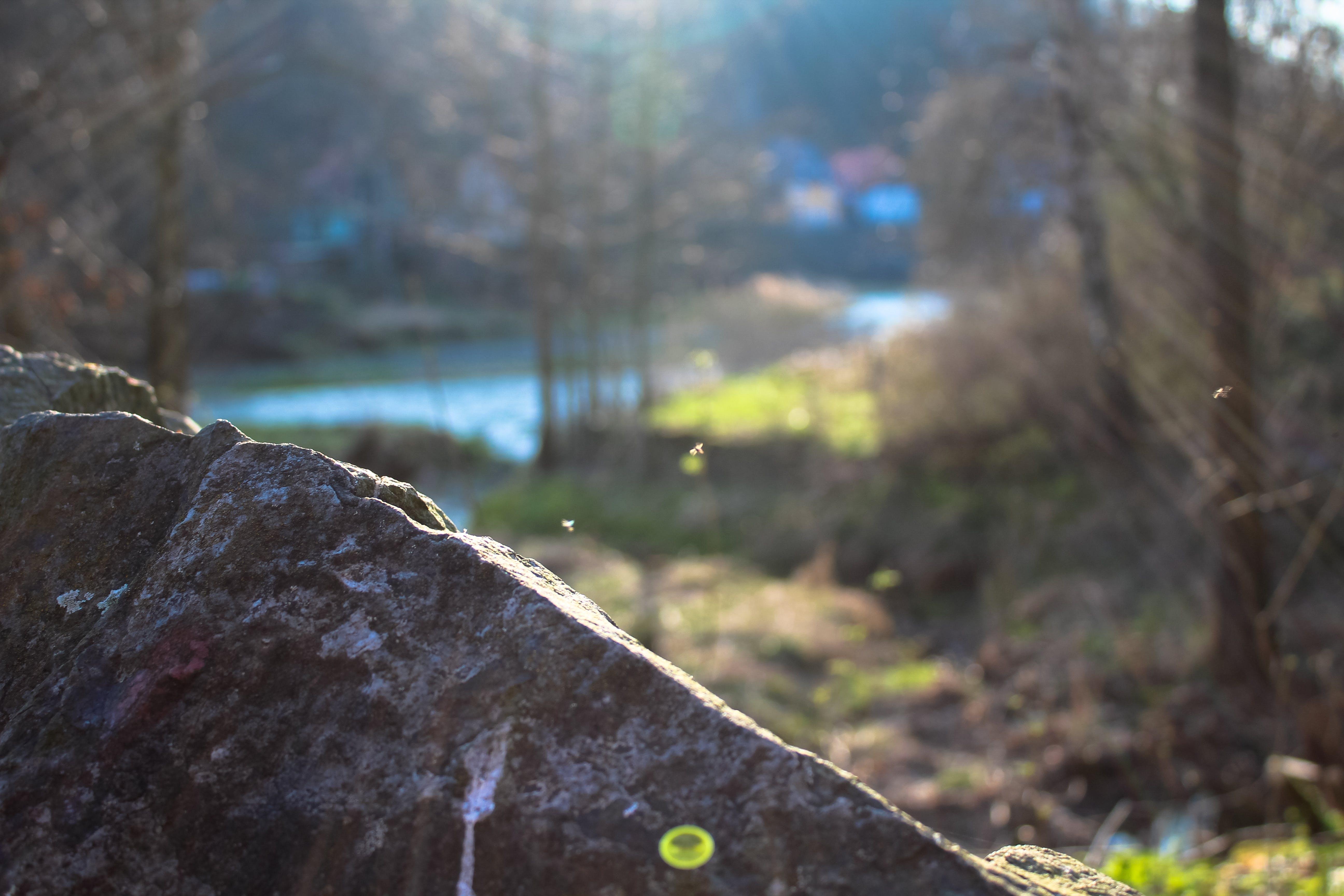 Kostenloses Stock Foto zu fels, hell, licht, natur