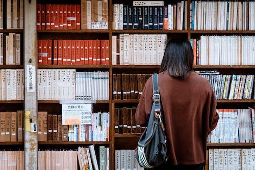 Foto stok gratis belajar, buku-buku, efek, hikmat