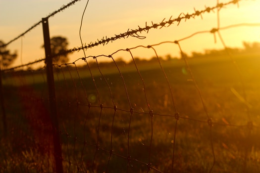 Black Chain Link Metal Fence in Grass Field