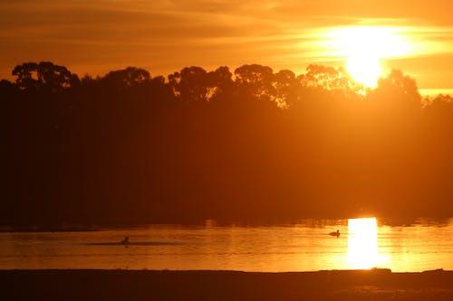 ağaçlar, baraj, gün batımı, Güneş içeren Ücretsiz stok fotoğraf