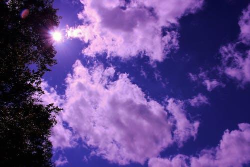 Gratis stockfoto met blauwe lucht, flare, hemel, Lensflare