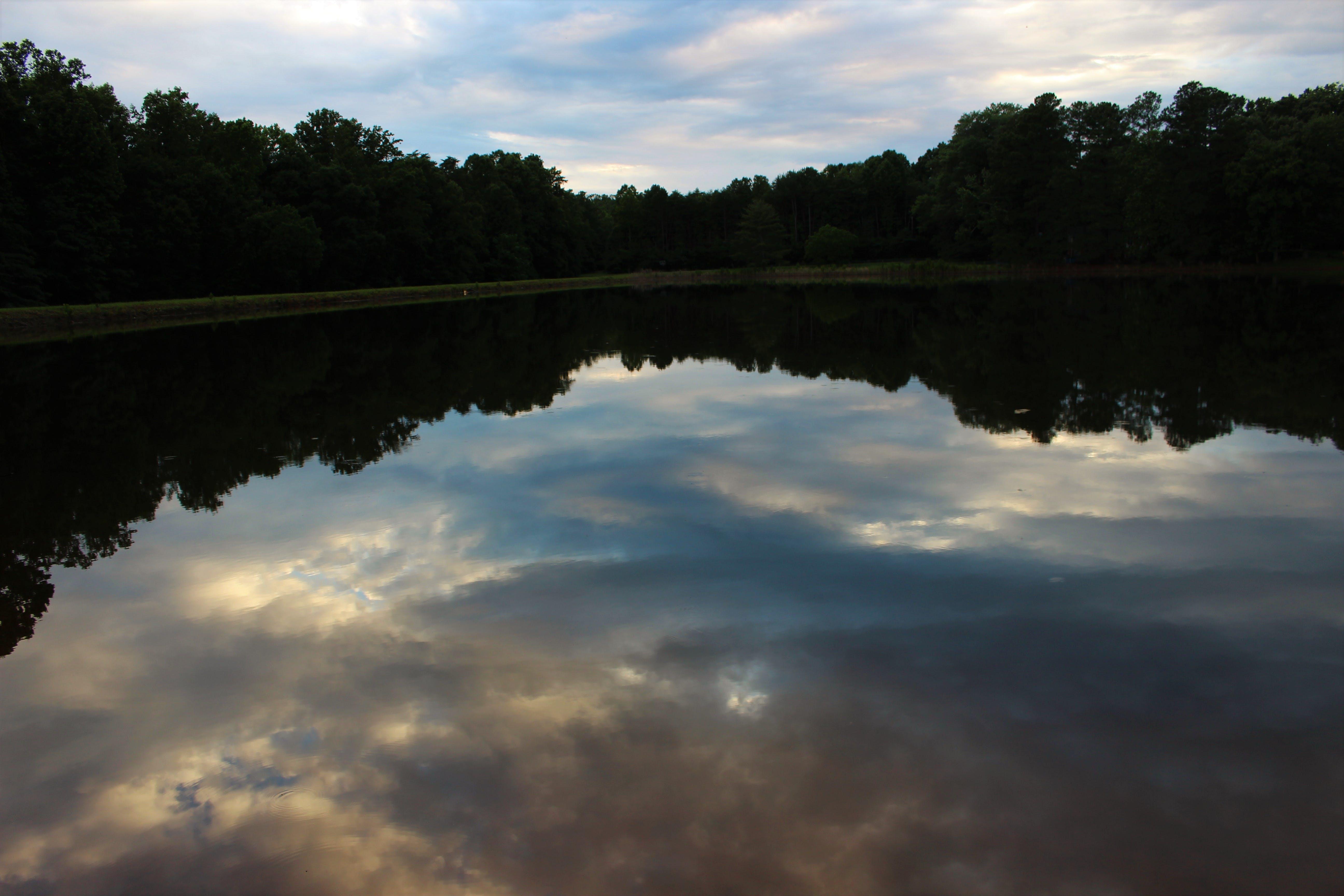 Kostenloses Stock Foto zu lichtreflexionen, natur, reflexionen, sonnig