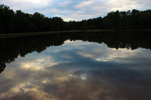 Gratis stockfoto met h2o, lichtreflecties, natuur, reflecties
