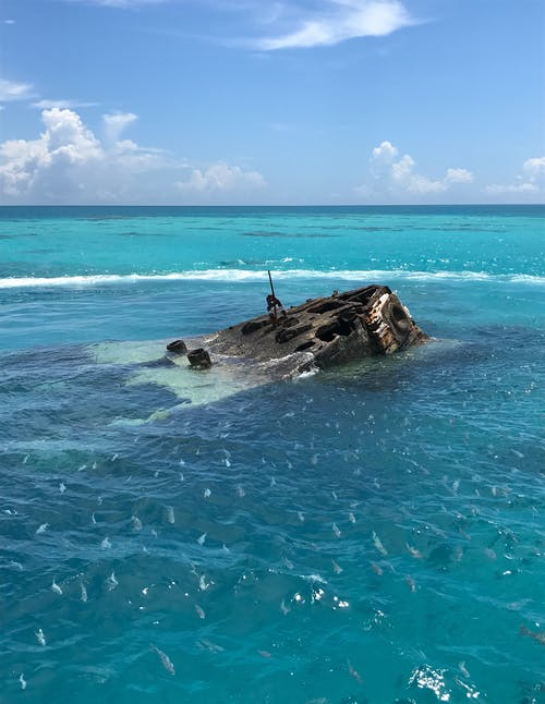 Gratis stockfoto met gezonken schip, schipbreuk, school vissen