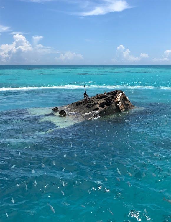 haaksirikko, kalaparvi, uponnut laiva