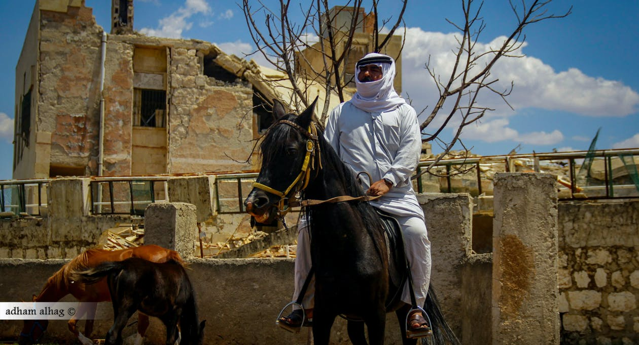 Kostenloses Stock Foto zu canon, esel, syrien