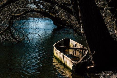 Free stock photo of beautiful, nature, traveling