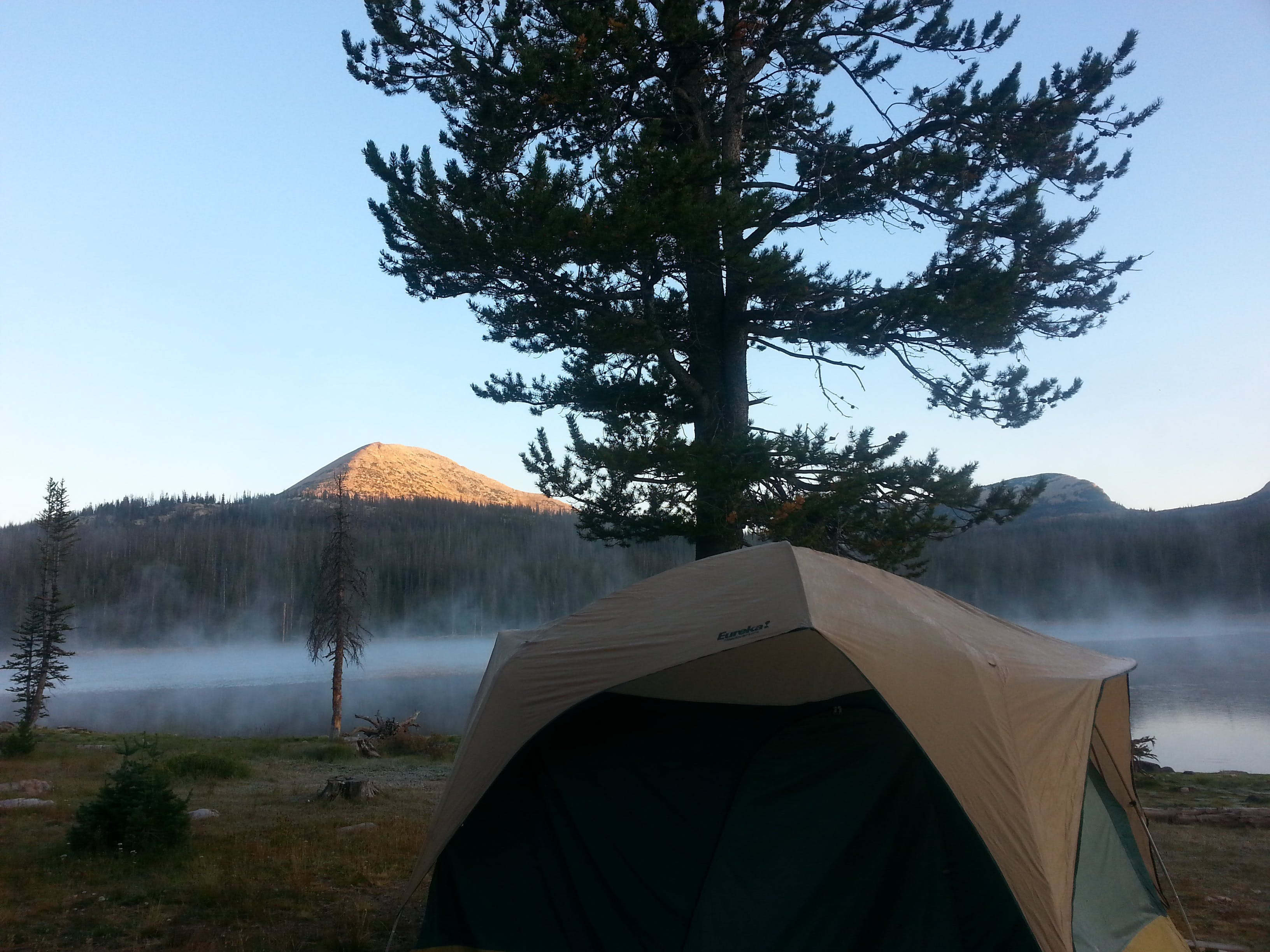 Free stock photo of camping, clarity, clear, fog