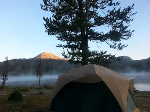 Gratis lagerfoto af Camping, fred, klar, klarhed